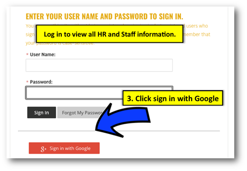 Log in instructions to click on google